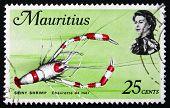 Postage Stamp Mauritius 1969 Spiny Shrimp, Crustacean
