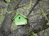 Green bird house