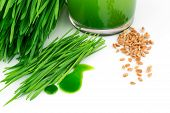 Wheatgrass Juice With Sprouted Wheat And Wheat