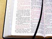 Open Bible, Portion