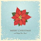 Christmas Greeting Card with Poinsettia