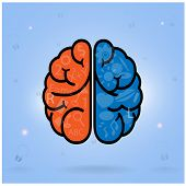 Left Brain And Right Brain Symbol,creativity Sign,business Symbol,knowledge And Education Icon