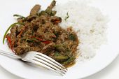 A meal of spiced lamb curry with coriander leaves and slivers of red and green chillies, served with plain boiled rice, close-up with fork