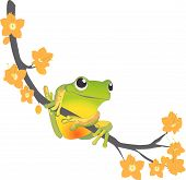 frog in a branch