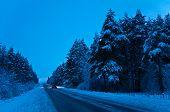 Winter Trip