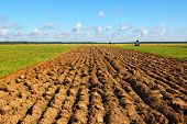 picture of plowed field  - Plowing of agricultural grounds by agro - JPG