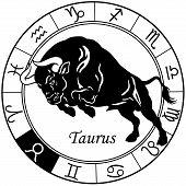 taurus zodiac black white