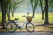 Old Vintage Bicycle In Public Park With Green Nature Concept