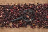 Magnifying Glass Lies On Hibiscus  And Sacking