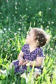 Girl  In A Dandelion Field