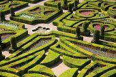 Gardens of the Chateau de Villandry, France