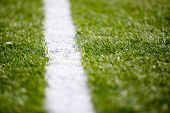 Soccer Football Field Grass White Line Background Texture