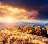 Majestic colorful landscape with sunny beams at mountain valley. Natural park. Dramatic morning scene. Red and yellow autumn leaves. Carpathians, Ukraine, Europe. Beauty world.