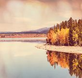 Autumn in Grand Teton with a Instagram toning effect