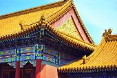 Golden roofs of the Forbidden City