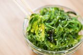 Fresh Made Kelp Salad