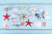 Sea souvenirs on light blue background
