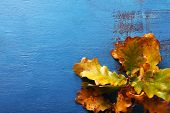 Yellow leaves on blue wooden background