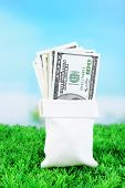 Lot of one hundred dollar bills in bag on grass on natural background