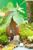 pic of fairy-mushroom  - Little fairy house with colorful mushrooms in a green forest - JPG