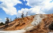 image of mammoth  - Mineral formations at the Mammoth hot springs area in Yellowstone national Park - JPG