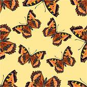 Seamless Texture Butterfly Vanessa Cardui Vector