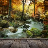 autumn forest waterfall and rocks covered with moss and wood pier