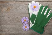 Pair of gloves and flowers. On wooden table with copy space