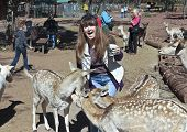 A Woman Has Fun Feeding The Deer