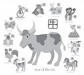 Chinese New Year Ox With Twelve Zodiacs Illustration