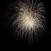 Colored fireworks over dark sky