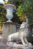 Lion On The Large Stone Staircase Pavlovsk Park