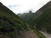 Narrow Backpacker's Trail In The Annapurna Himalayas During Monsoon