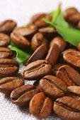 roasted arabica coffee beans with fresh green leaves, scattered on the table