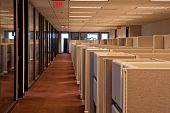 Rows Of Cubicles In An Office