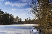foto of paysage  - Park the frozen lake with ducks in early spring - JPG