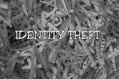 foto of theft  - The words  - JPG