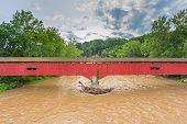 stock photo of covered bridge  - The Deer - JPG