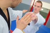 image of enthusiastic  - Martial arts enthusiasts - JPG