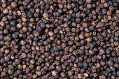 picture of peppercorns  - Dry Black Pepper PepperCorn background texture  - JPG