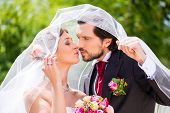 picture of bridal veil  - Bridal pair kissing under veil at wedding - JPG