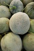 stock photo of muskmelon  - Close up organic rock melon sale in market