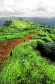 stock photo of rainy season  - Scenery mountain and amazing meadow in rainy season - JPG