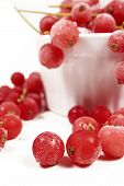 foto of ice crystal  - Frozen currants with stems are covered with ice crystals in white porcelain bowl on a white background - JPG