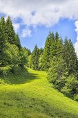 foto of bavaria  - Landscape on the Alpspitz near Nesselwang in the Allgaeu Bavaria Germany - JPG