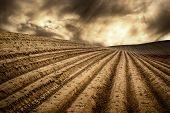 picture of track field  - Landscape with moody light shows a hill with many tracks on dry fields leading to the horizon and a dramatic cloudscape - JPG