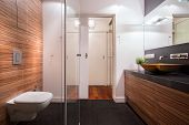 stock photo of exclusive  - Photo of exclusive new washroom with wooden walls - JPG