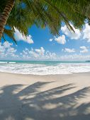 picture of beach hut  - tropical beach with coconut palm - JPG