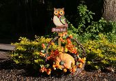 image of fall decorations  - Yard decorations can be seasonal as is this Happy Fall arrangement for a home on Hilton Head Island - JPG