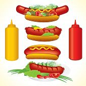 Hot dogs illustrations-detailed vector, all elements separated and grouped